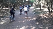 spiaggia romea bici 2